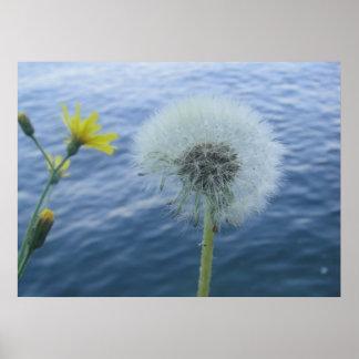 Yellow Flower Globe Poster