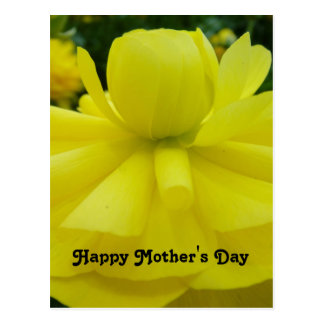 Yellow Flower Happy Mothers Day Greeting Postcard