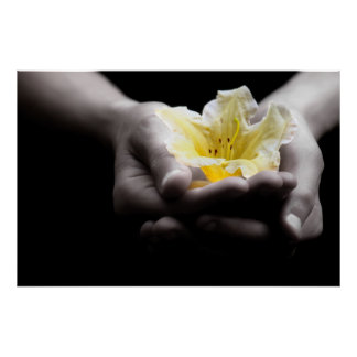 Yellow Flower In Hands Poster