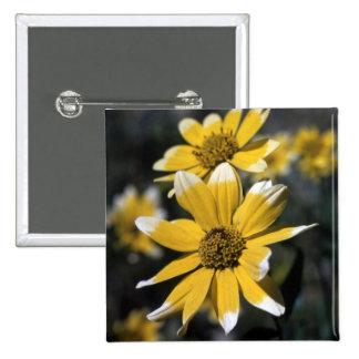 Yellow Flower Pins