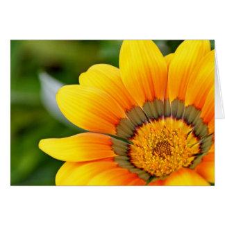 Yellow Flower Sunshine Print Card