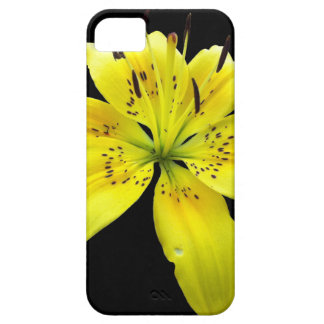 Yellow Flower Tiger Lilly Black Background iPhone 5 Covers