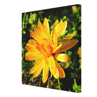 Yellow Flower Wrapped Canvas