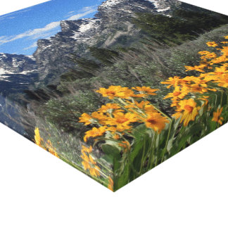 Yellow Flowers and Snow Capped Mount Teton Range Gallery Wrap Canvas