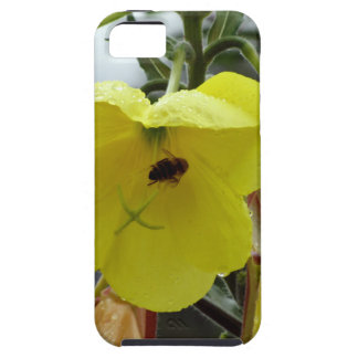Yellow flowers closeup with water droplets and bee iPhone 5 cover