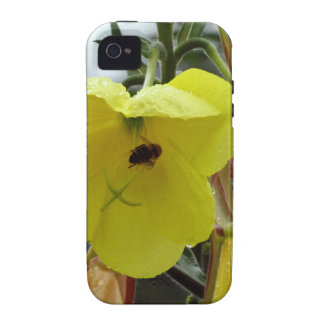 Yellow flowers closeup with water droplets and bee vibe iPhone 4 case