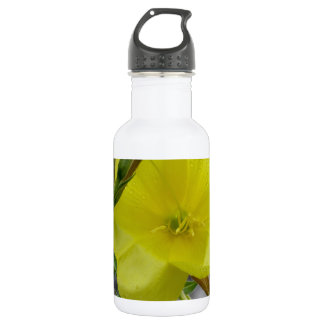 Yellow flowers closeup with water droplets 18oz water bottle