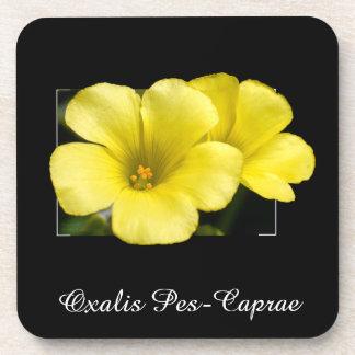 yellow flowers coaster