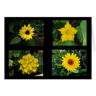 Yellow Flowers Collection Card