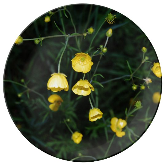 Yellow Flowers Dinner Plate
