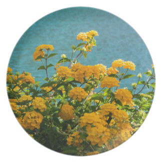 yellow flowers for good mood everyday plate