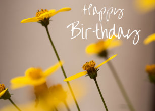 Happy Birthday Yellow Flower Invitations Stationery Zazzle Au