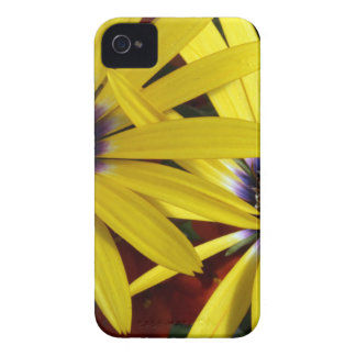 Yellow Flowers iPhone 4 Case-Mate Case