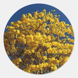 YELLOW FLOWERS QUEENSLAND AUSTRALIA ROUND STICKER
