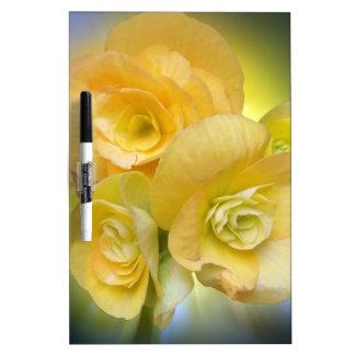 yellow flowers shining dry erase board