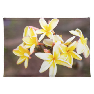 Yellow frangipani flowers placemat