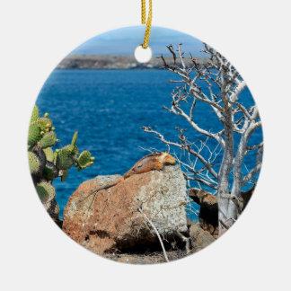 Yellow Galapagos land iguana relaxing on rock Ceramic Ornament