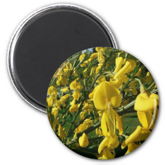 Yellow Garden Flowers Refrigerator Magnet
