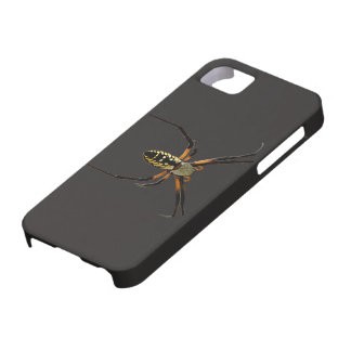 Yellow Garden Orb-Weaver Spider iPhone 5/5S Covers