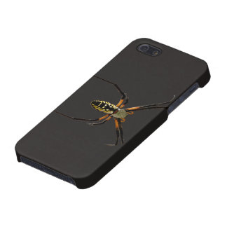 Yellow Garden Orb-Weaver Spider Cover For iPhone 5/5S