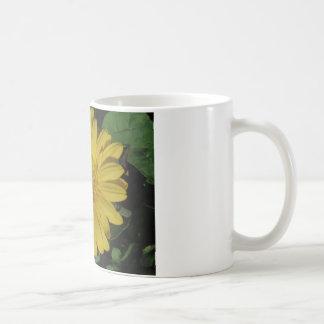 Yellow Gerber / Gerbera Daisy Basic White Mug