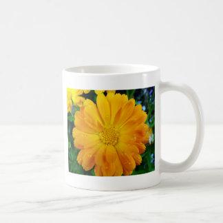 yellow gerbera daisy flower mugs