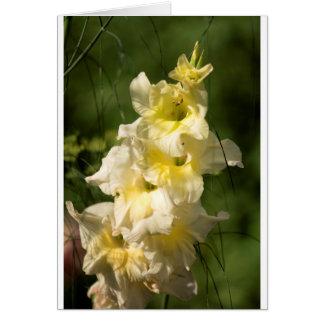 Yellow Gladiolus Flower Spike Card