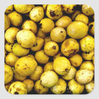 Yellow Guava Square Sticker