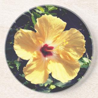 Yellow HIbiscus Coaster
