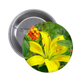 Yellow Hybrid Lilly Button
