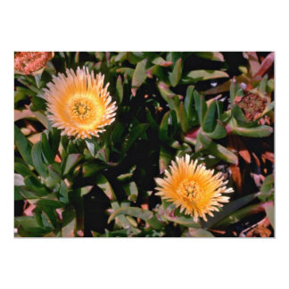 "Yellow Ice Plant flowers 5"" X 7"" Invitation Card"