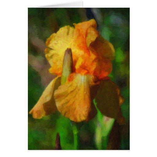 Yellow Iris-Blank Card