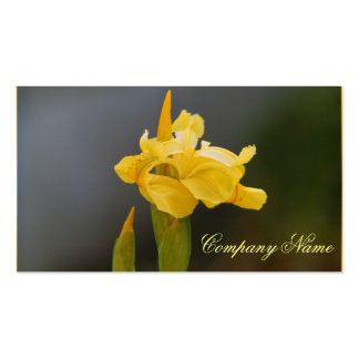 Yellow Iris business cards