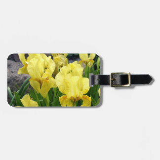 Yellow Iris flowers Luggage Tag