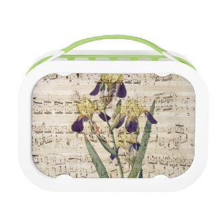 yellow iris music lunch box