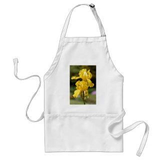 Yellow iris standard apron