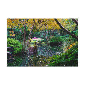 Yellow Japanese Maples Canvas Print