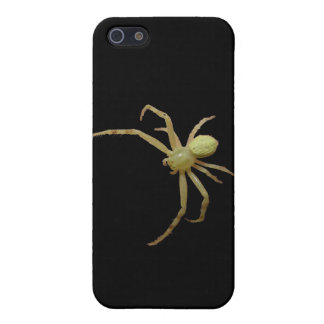 yellow jumping spider iPhone 5/5S covers