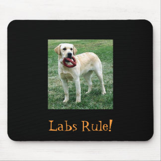 Yellow Lab, Labs Rule! Mouse Pad