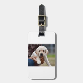 Yellow Lab Puppy Being Held By a Friend Luggage Tag