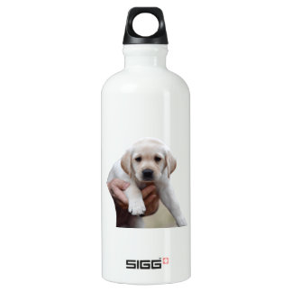 Yellow Lab Puppy Being Held By a Friend Water Bottle