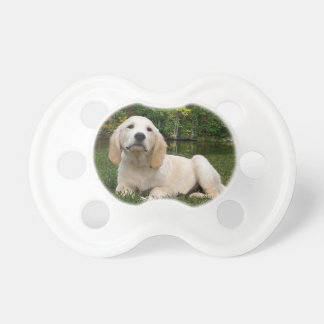 Yellow Lab Puppy in Fall Pacifier