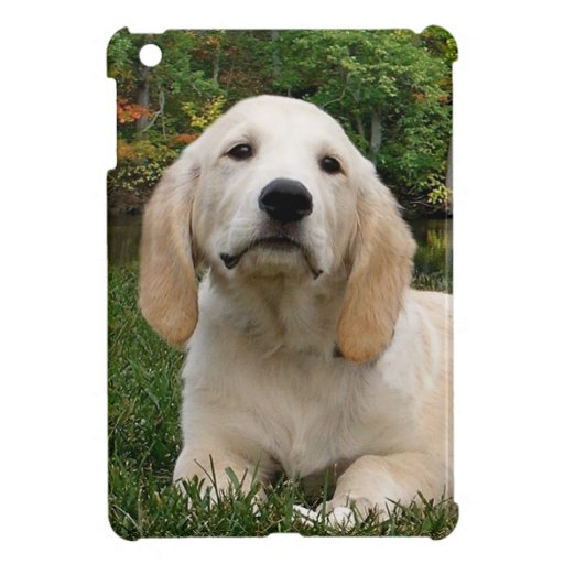 Yellow Lab Puppy in Fall Cover For The iPad Mini