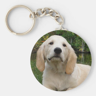 Yellow Lab Puppy in Fall Key Chains