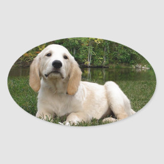 Yellow Lab Puppy in Fall Oval Sticker
