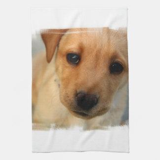 Yellow Lab Puppy Kitchen Towel