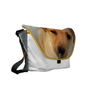 Yellow Lab Puppy Messenger Bag