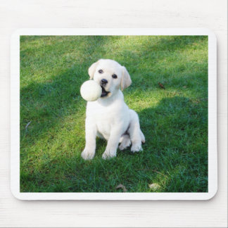 Yellow Lab Puppy Mouse Pad