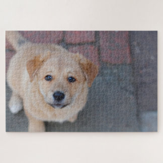 Yellow Lab Puppy Photograph Jigsaw Puzzle