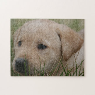 Yellow Lab puppy Puzzle